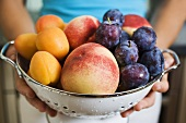 Woman holding colander full of plums, peaches and apricots