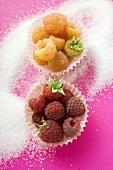 Yellow & red raspberries in paper cases, sugar around them