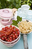Redcurrants, pan and preserving jars on garden table
