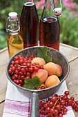 Redcurrants & apricots in pan in front of bottles of juice