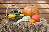 Squashes and pumpkins on straw in front of wooden wall