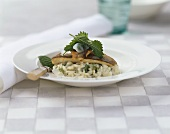 Fried charr on risotto with nettles