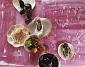 An assortment of fresh shellfish & chillies (overhead view)