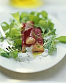 Salmon trout fillets wrapped in beetroot with corn salad