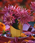 Pink dahlias in small yellow vase