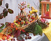 Basket of rose hips, crab-apples, chestnuts and hydrangeas