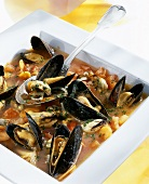 Zuppa di cozze (Mussel soup with tomatoes, Italy)