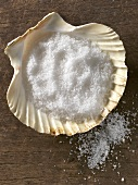 Fleur de sel (French salt) in scallop shell