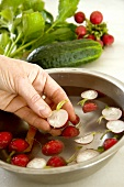 Washing radishes in a bowl