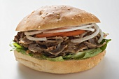 Döner sandwich with onions and tomatoes