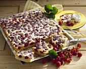 Cherry marzipan cake on baking tray