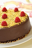 Chocolate cake with raspberries and yellow sprinkles