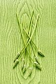 Wild asparagus on green wooden background