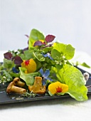 Salad leaves with edible flowers and chanterelles
