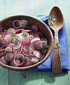 Radish and onion salad