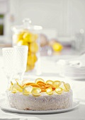 Orange and lemon cake with grated coconut