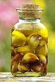 Garlic pickled in olive oil