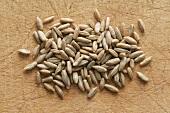 Grains of rye