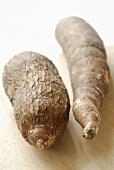Two manioc roots