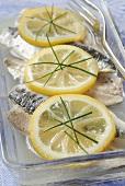 Sardines in lemon marinade