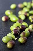 Many fresh olives