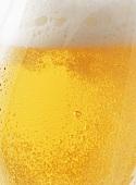 Glas helles Bier (Close Up)