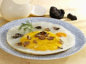 Fried ostrich egg with truffle