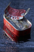 Sardine tin, opened