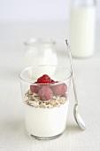 Joghurt mit Cerealien und Himbeeren