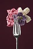 Candied edible flowers held in tongs (rose, violet, jasmine)