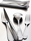 Cutlery, fabric napkin in background