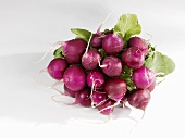 Purple radishes, a bunch