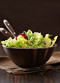Mixed salad leaves in wooden bowl