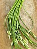 Fresh garlic chives on wooden background