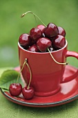 Cherries in red cup and saucer on table out of doors