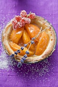 Apricot tart with redcurrants and lavender flowers