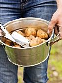 Woman holding bucket of freshly dug potatoes