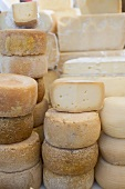 Various cheeses in a shop