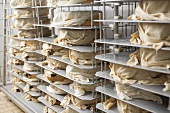 Cheese wrapped in cloths stored on shelves