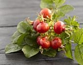 Spray of rose hips on wooden table