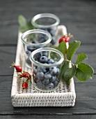 Fresh blueberries in jam jars
