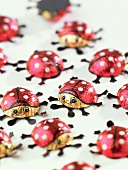 Ladybirds (sign of good luck)