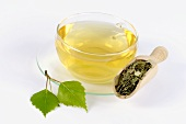 Birch leaf tea in glass cup, tea leaves in wooden scoop