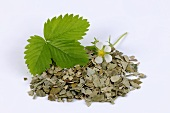 Wild strawberry leaves (fresh and dried) & strawberry flower