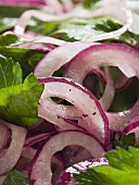 Red onion salad with parsley