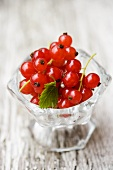 Redcurrants in a small glass dish