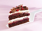 Piece of chocolate cake with pears and cranberries