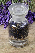 Lavender tincture in apothecary bottle, lavender flowers