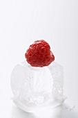 Raspberry on an ice cube