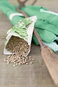 Spinach seeds in packet, garden tool and gloves